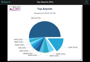 FlightsReportsAirportsPie